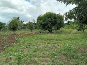 Plot For Sale At Kibaha Kwa Mbonde | Land & Plots For Sale for sale in Pwani Region, Kibaha