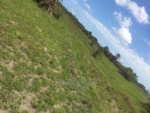 Mashamba Vigwaza, 2.5mil Tu | Land & Plots For Sale for sale in Pwani Region, Kibaha