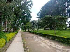 Kiwanja Kinauzwa   Land & Plots For Sale for sale in Mkuranga, Vikindu