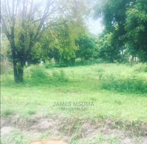 Viwanja Madale   Land & Plots For Sale for sale in Dar es Salaam, Kinondoni