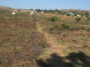 Viwanja Mapinga, Karibu Na Baobab   Land & Plots For Sale for sale in Pwani Region, Bagamoyo