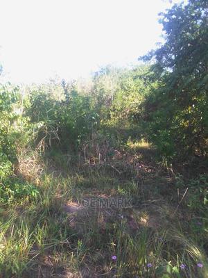 Eneo Linauzwa Vigwaza | Land & Plots For Sale for sale in Kibaha, Mlandizi