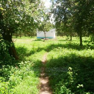 Shamba Linauzwa Iringa | Land & Plots For Sale for sale in Kilolo, Dabaga