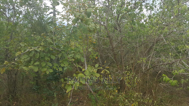 Shamba Linauzwa | Land & Plots for Rent for sale in Bagamoyo, Pwani Region, Tanzania