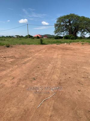 Viwanja Iyumbu, Bei Nafuu   Land & Plots For Sale for sale in Dodoma Region, Dodoma Rural