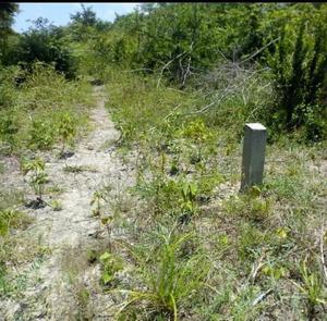 Kiwanja Kinauzwa Kigamboni   Land & Plots For Sale for sale in Dar es Salaam, Kinondoni