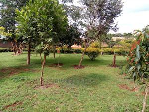 Plot 600sqm   Land & Plots For Sale for sale in Karatu, Karatu
