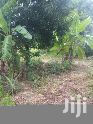 Kiwanja Kinauzwa Kibaha   Land & Plots For Sale for sale in Dar es Salaam, Kinondoni