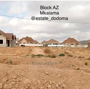 Land for Sale   Land & Plots For Sale for sale in Dodoma Region, Dodoma Rural