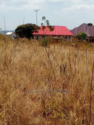 Mwanza Nyashishi Kiwanja Kinauzwa   Land & Plots For Sale for sale in Misungwi, Fella