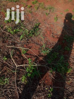 Shamba Linauzwa Pwani | Land & Plots For Sale for sale in Pwani Region, Bagamoyo