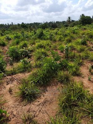 Miladi Bora Ya Viwanja Kibaha Kwa Mathias | Land & Plots For Sale for sale in Pwani Region, Kibaha