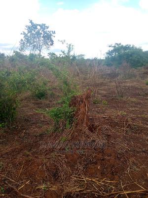 Shamba Linauzwa Mbwewe Pwani | Land & Plots For Sale for sale in Bagamoyo, Mbwewe