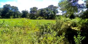 2 Acre Plot for Sale   Land & Plots For Sale for sale in Arusha Region, Arusha