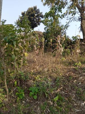 Plot for Sale | Land & Plots For Sale for sale in Arusha Region, Arusha