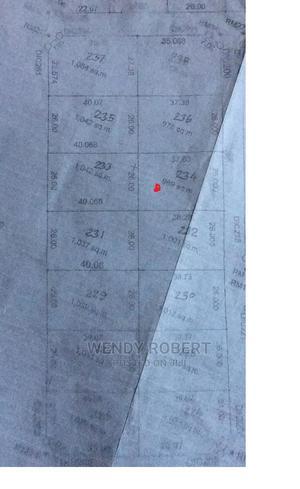 988 Sqm Beach Plot for Sale at Kigamboni Amani Gomvu | Land & Plots For Sale for sale in Temeke, Kigamboni