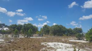 Shamba Linauzwa Kigamboni Mwasonga. | Land & Plots For Sale for sale in Temeke, Kigamboni
