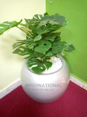 Fibreglass Flower Pots/Planters   Garden for sale in Dar es Salaam, Temeke