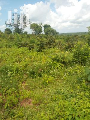 Shamba Linauzwa | Land & Plots For Sale for sale in Pwani Region, Bagamoyo