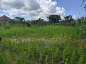 Shamba Linauzwa | Land & Plots For Sale for sale in Pwani Region, Mkuranga