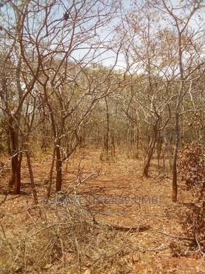 Shamba La Uwekezaji   Land & Plots For Sale for sale in Kilolo, Ukwega