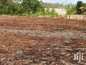 Viwanja Tunauza Kwa Bei Poa Kabisa Milioni Mbili Vianzi   Land & Plots For Sale for sale in Dar es Salaam, Temeke