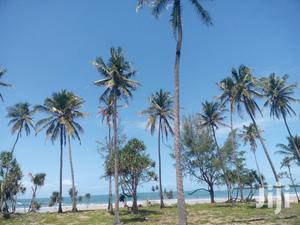 Viwanja Vya Beach Vinauzwa Kigamboni   Land & Plots For Sale for sale in Dar es Salaam, Temeke