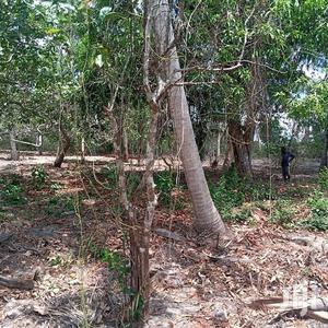 Shamba Linauzwa | Land & Plots For Sale for sale in Mkuranga, Vikindu