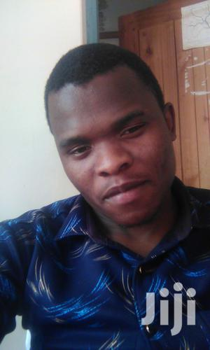Diploma in Clinical Medicine   Healthcare & Nursing CVs for sale in Njombe Region, Njombe Urban