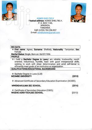 Childcare & Babysitting CV   Childcare & Babysitting CVs for sale in Mwanza Region, Nyamagana