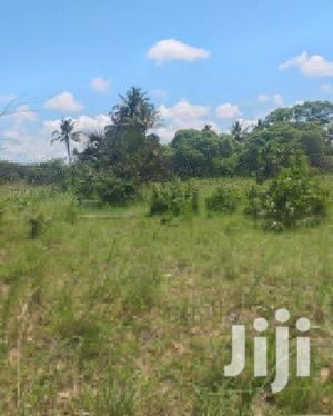 Plot For Rent At Bagamoyo Kiromo   Land & Plots for Rent for sale in Bagamoyo, Kiromo