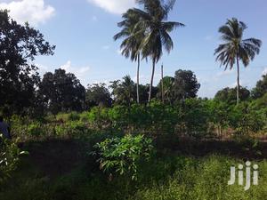 Shamba Linauzwa Bei Poa | Land & Plots For Sale for sale in Mkuranga, Bupu