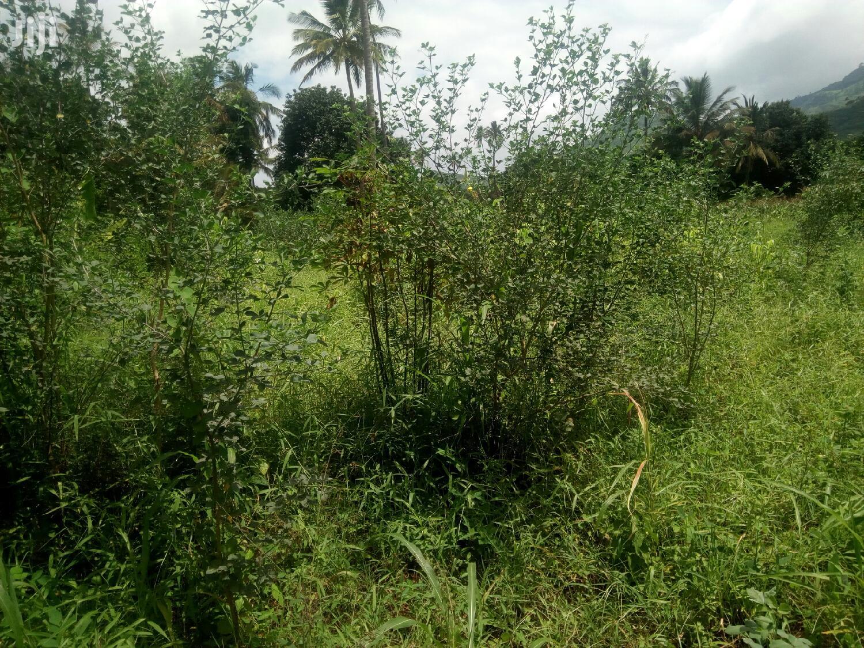 Plot for Sale   Land & Plots For Sale for sale in Morogoro Urban, Morogoro Region, Tanzania
