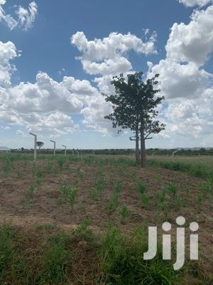 Viwanja Dodoma Iyumbu, Bei Nafuu   Land & Plots For Sale for sale in Dodoma Region, Dodoma Rural