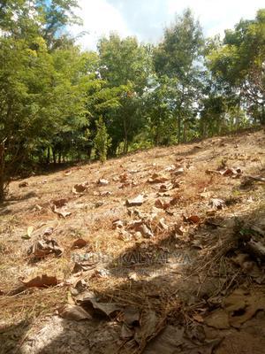 Kiwanja Kizuri Kinauzwa   Land & Plots for Rent for sale in Kinondoni, Kinondoni