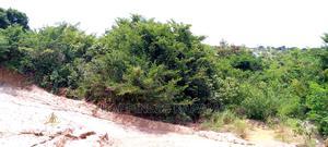 OFA! Kiwanja Kinauzwa Kipo Boko Magereza   Land & Plots For Sale for sale in Dar es Salaam, Kinondoni